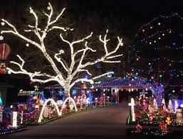 celebration fl christmas lights the 23 best ways to see christmas lights in orlando this holiday season