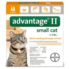 amazon com advantage ii flea prevention for small cats 5 9