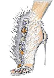 247 best shoe illustrations images on pinterest shoe