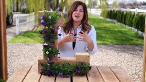 Monogram Planter Outdoor Cedar Monogram Flower Planter By Ellery Designs Youtube