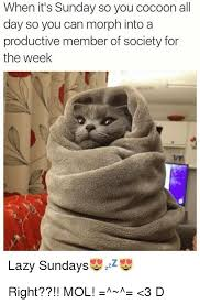 Lazy Day Meme - lazy memes top mobile trends
