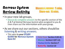 Anatomy And Physiology Nervous System Study Guide Today In Human Anatomy Have Out Pick Up Anatomy Fun Fact