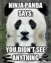 Ninja Meme - panda words of wisdom