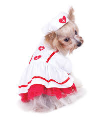 Dog Ghost Halloween Costumes by Dog Costumes For Halloween And Special Events U2013 G W Little