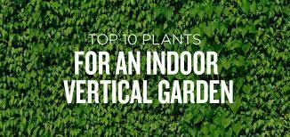 indoor vertical garden kit uk indoor vertical garden artificial
