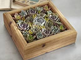 11 no fail gifts for gardeners hgtv