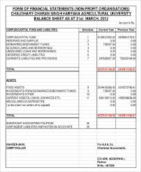 Financial Statement Template For Non Profit Organization by Non Profit Balance Sheet 8 Exles In Word Pdf