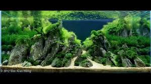 Japanese Aquascape by 100 Japanese Aquascape 60x30x36cm 64l Day 452 Aquascape By
