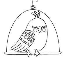 bird printable coloring pages hellokids