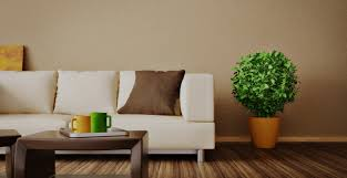 Property Maintenance And Handyman Services In London Daniel Cobb
