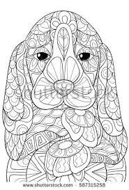coloring pagebook bird art style stock vector 631278650