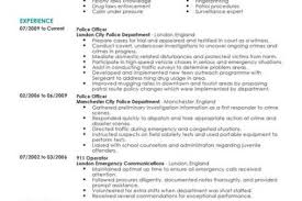 Police Officer Resume Sample by Warrant Officer Resume Summary Example Reentrycorps