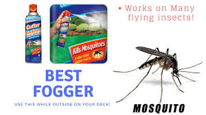 best bug control backyard fogger youtube