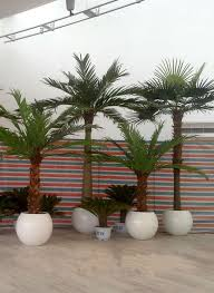 indoor potted palm trees ornamental artificial mini palm trees