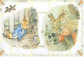 rabbit by beatrix potter beatrix potter rabbit mr mcgregor from a collection of
