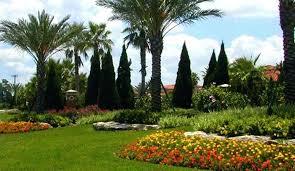 Orlando Landscape Lighting Landscape Contractor Orlando Garden Design With Landscape Lighting