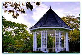 Singapore Botanic Gardens Mrt by Singapore Botanic Gardens 150 Years Old And Still Blooming