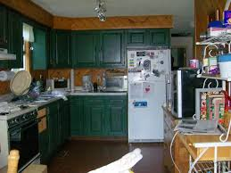 Alluring  Kitchen Cabinets Painted Green Design Decoration Of - Painting my kitchen cabinets