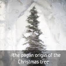 the pagan origin of the christmas tree thetreeproject