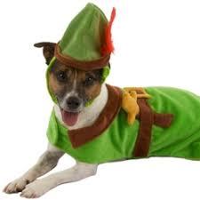 Disney Halloween Costumes Dogs Disney Peter Pan Dog Halloween Costume Findgift