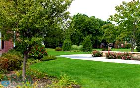 100 patio landscaping 37 best patio pavers in san diego