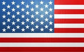 Cool American Flag Wallpaper Flowers Pics Qygjxz