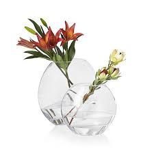 Single Stem Glass Vase 209 Best Beautiful Blooms Images On Pinterest Beautiful Flowers