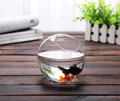 dia12cm round glass bowl vase succulent terrarium glass fish