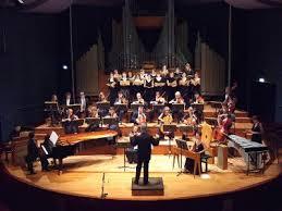 orchestre de chambre de orchestre de chambre ile de ensemble jean walter audoli