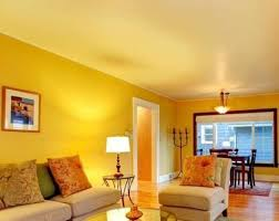 interior home solutions paints home solutions photos himayat nagar hyderabad
