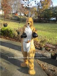 9 Month Halloween Costume Coolest Kangaroo Diy Costume Diy Costumes Kangaroos Costumes