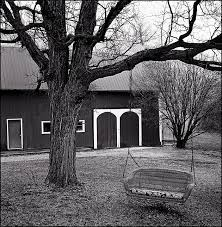 a wicker porch swing on a tree in rural indiana photograph by