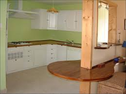 kitchen kitchen cabinets colors and designs kitchen color ideas