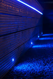 Blue Led Lights Strips by Garden Led Lighting Strips How To Choose And Install Led Garden