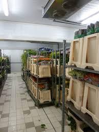 chambre froide fleuriste le stockage marché floral