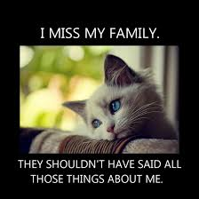 Sad Kitty Meme - sad kitty by secretxax on deviantart