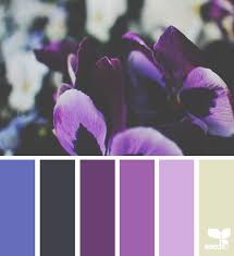 6124 best colour studies images on pinterest colors color