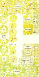 small vegetable garden plan pocket vegetable garden gardening