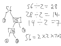 prime factorization tree solving systems of equations by graphing