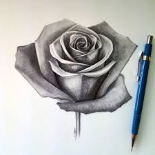drawing a realistic rose pencil drawing of rose flower pencil