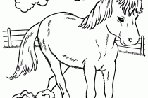 jockey on a galloping horse coloring pages hellokids com wild