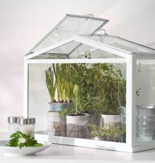 Windowsill Greenhouse 49 Best Plants Images On Pinterest Plants Greenhouse Ideas And