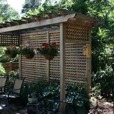 Backyard Screening Ideas Outdoor Privacy Screen Ideas Plants Temporary Outdoor Privacy
