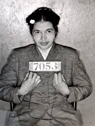 Rosa Parks Meme - put me like 盞 heirloom mountain rose apples from oregon