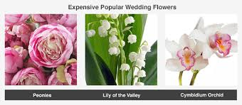 cost of wedding flowers average cost of wedding flowers valuepenguin