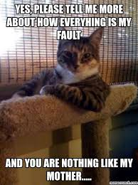 Please Tell Me More Meme - please tell me more about how everyhing is my fault