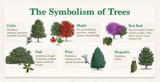 symbolism trees remembrance and celebration trees fannin tree farm