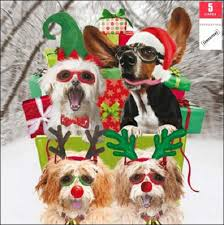 pack of 5 christmassy dogs samaritans charity cards