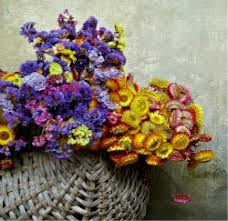 Dry Flowers How To Air Dry Flowers At Home