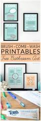 Unisex Kids Bathroom Ideas by Best 25 Bathroom Printable Ideas On Pinterest Bathroom Wall Art